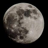 Moon – Raleigh, NC
